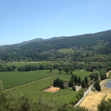 SterlingWinery_0069