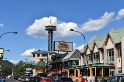Gatlinburg2017_3573