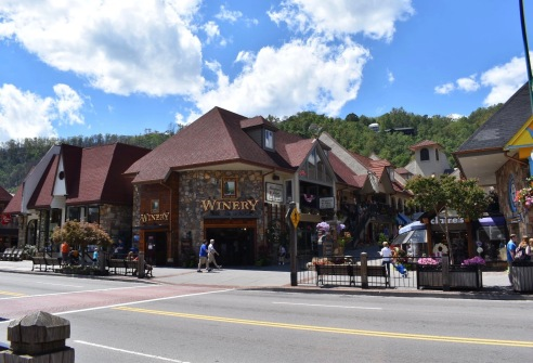 Gatlinburg2017_3591