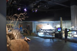 CaliforniaScienceCenter_5305