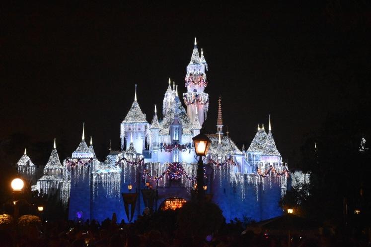 DisneylandHolidays_5599
