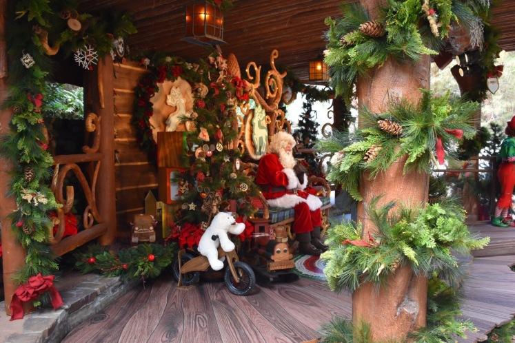DisneylandHolidays_5749