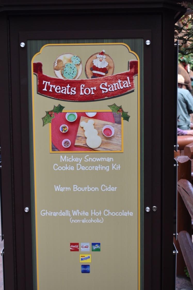 DisneylandHolidays_5750