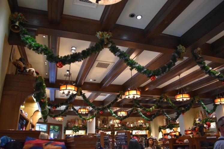 DisneylandHolidays_5772