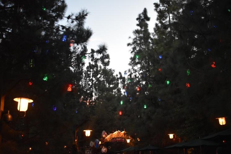 DisneylandHolidays_5779