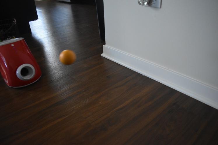 Playball_6348
