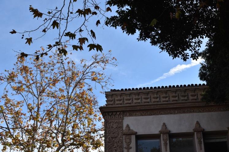 State Street Santa Barbara_3020