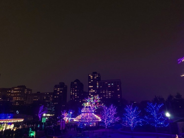 LincolnParkLights_0247
