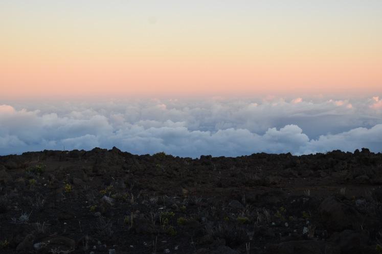 Haleakala Sunrise Tour_4957