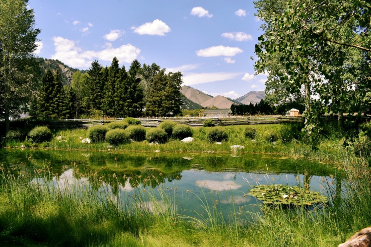 SunValley_0332